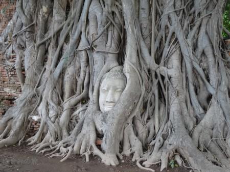 ayutthaya025