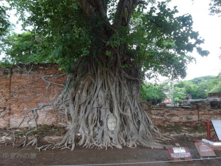 ayutthaya026